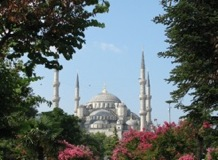 Blue Mosque Framed in Trees - Istanbul